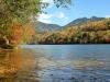 秋の大尻沼