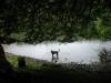 大尻沼水遊び