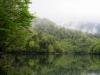 霧の大尻沼